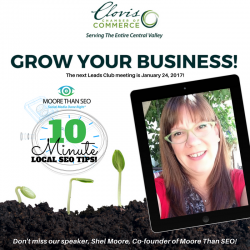 Co-founder, Shel Moore, To Talk Search Marketing at Clovis Chamber of Commerce Leads Club